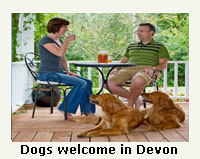 dogs welcome cottages devon